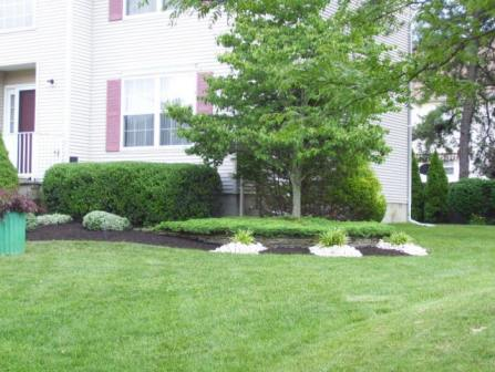landscape, landscaper, landscaping, landscaping services, lawns, Lawn Services, lawn cutting service, lawn mowing service, Mowing, Edging, Fertilization, Aeration, Thatching, Seeding, Planting, Mulching, Bush trimming, Shrub trimming, tree installation, Tree removal, Spring cleanup, fall cleanup, clean up, fertilize, fertilizer, fertilizing, lawn fertilizer, grass fertilizer, grass, grass mowers, grass cutting, grass cutters, grass cutting services, lawn aeration, spring lawn seeding, spring lawn fertilizing, summer lawn seeding, summer lawn fertilizing, summer lawn maintenance, fall lawn seeding, fall lawn fertilizing, trees, tree services, tree cutters, tree cutting, tree trimmers, mulch, mulching, garden mulching, leaves, leaf, leaf raking, leaf clean up, leaf removal, yard clean up, shrub removal, shrubbery, flower planting, shrub planting, shrubs, flowers, spring planting, seeding, fertilization, South River NJ, East Brunswick NJ, Old Bridge NJ, Spotswood NJ, Parlin NJ, Sayreville NJ, Helmetta NJ Monroe NJ, Jamesburg NJ middlesex county, monmouth county