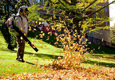hurricane cleanup service, leaf removal service, leaf blowing company, fall leaf raking services, debris removal service,