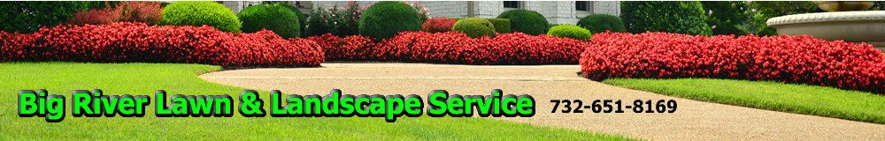 Tree Service, Tree Removal, Trimming Service & Stump Grinding, Leaf Cleanup, Middlesex County NJ, new jersey